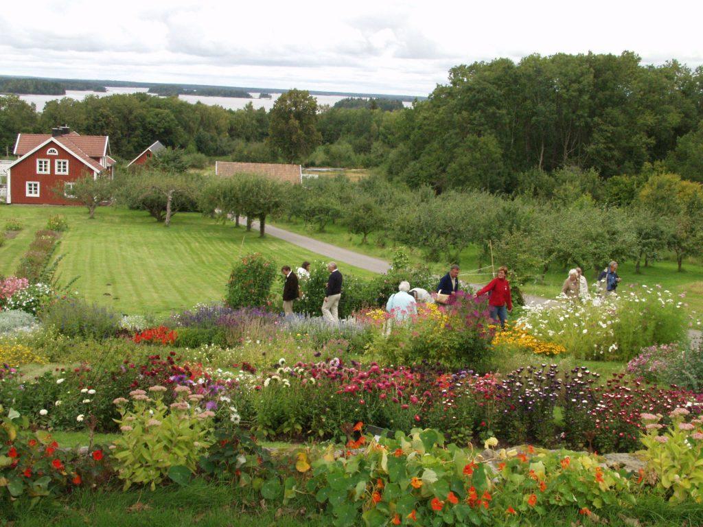 Kurrebo trädgård