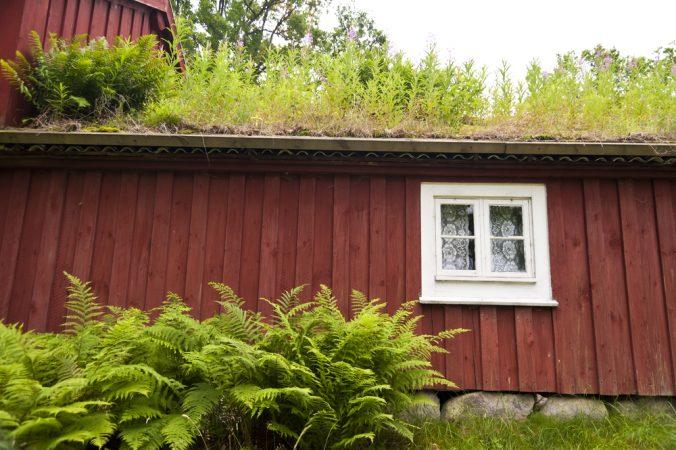 Använd väderskydd vid renovering av tak på timmerhus