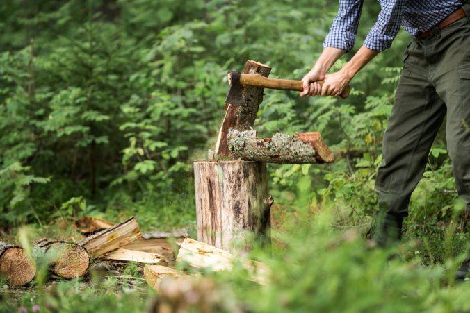 Hugger ved ute i skogen
